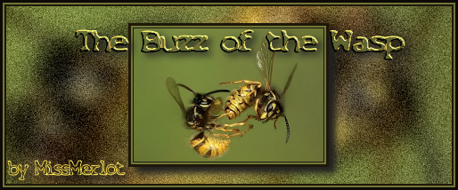 stories/1385/images/Buzz_of_the_Wasp_banner.png