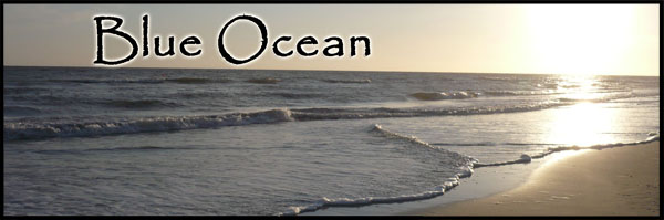stories/35/images/Blue_Ocean_new_banner.jpg
