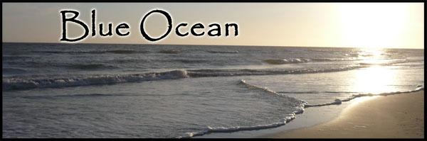 stories/35/images/Blue_Ocean_new_banner.jpg